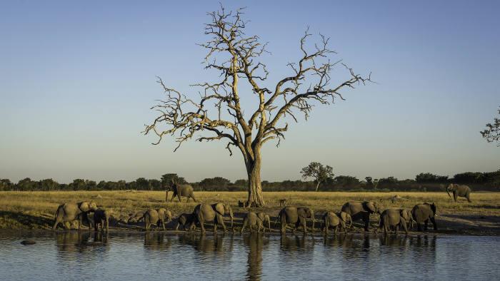 VIAGGIO IN ZIMBABWE CON ANDA